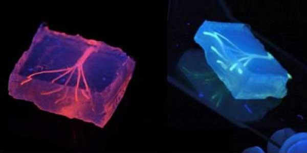 3d-printed-blood-vessels