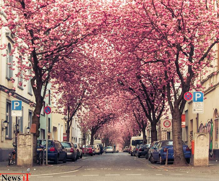 Top-10-Streets-Bonn-740x611