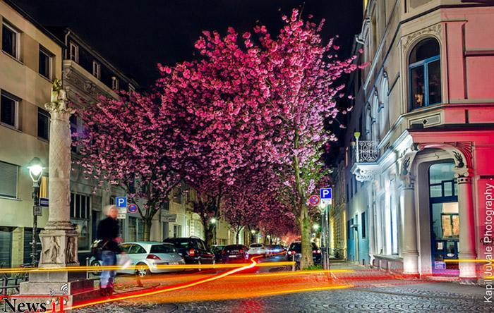 Top-10-Streets-Bonn-Photo-by-Kapil-Juvale