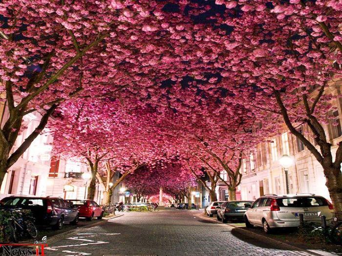 Top-10-Streets-Bonn2-740x555