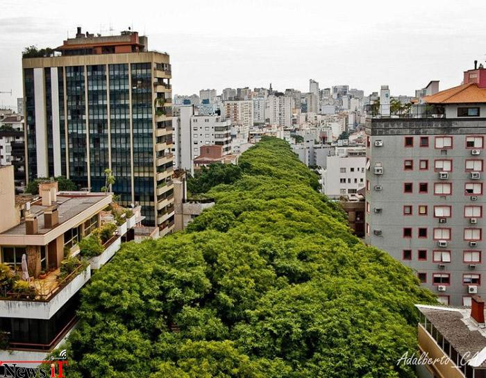 Top-10-Streets-Brazil-Photo-by-Adalberto-Cavalcanti-Adreani-740x576