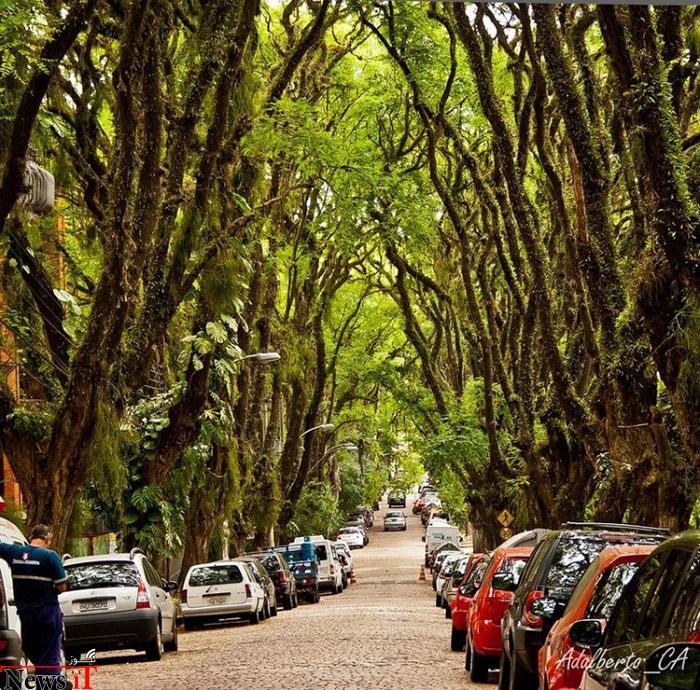 Top-10-Streets-Brazil-Photo-by-Adalberto-Cavalcanti-Adreani2-740x729